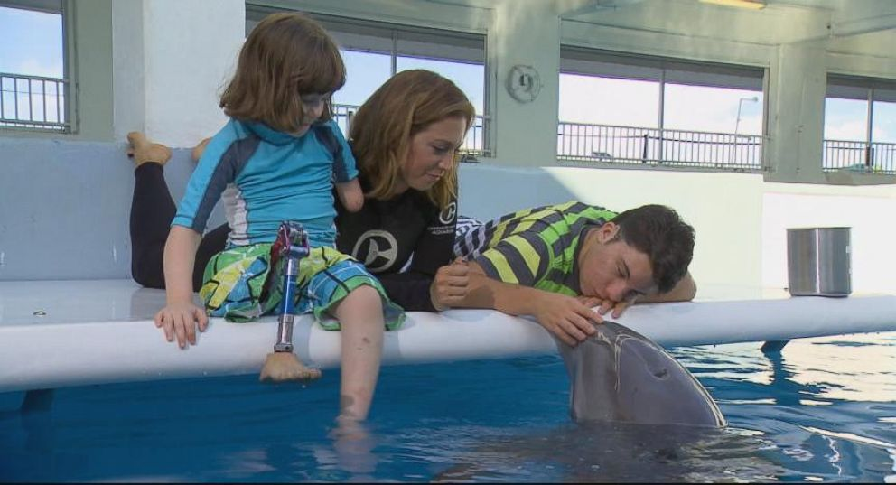 Disabled Dolphin Inspires Young Kids Video Abc News