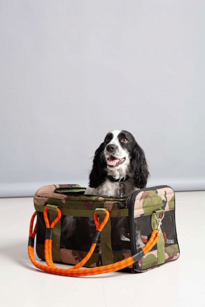 Roverlund: Leashes, Pet Carriers & Carry-All