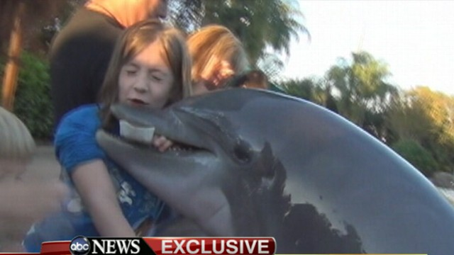 Jillian Thomas: Dolphin Bites Girl At SeaWorld: Caught On Tape