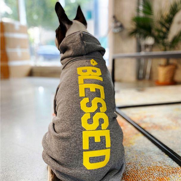 House Dogge: D.O.G. Hoodie