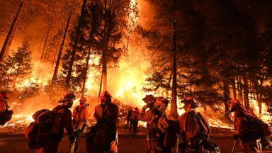 Firefighters battle the Carr fire near Redding, Calif., July 31