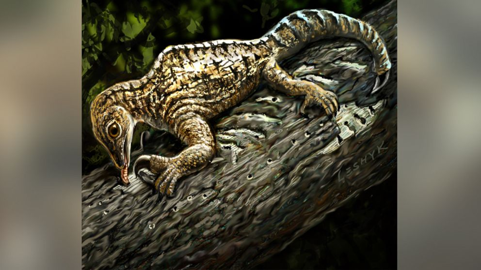 reptile with bizarre front limbs tweaks current