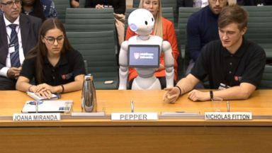 A robot presented evidence about artificial intelligence to a British Parliament committee