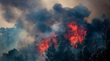 Portugal, Spain get upper hand over major wildfires