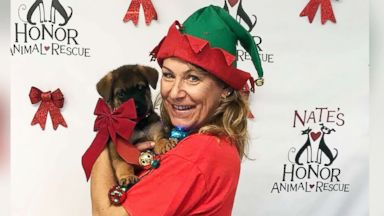 Families welcome furry friends to forever homes with special Christmas adoptions
