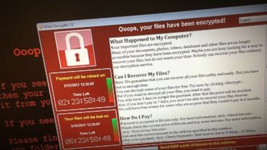 Number of cyberattack victims in Europe not rising as feared: Europol