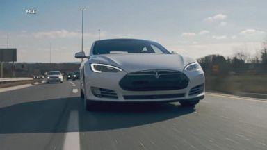 Tesla Model Y coming next year