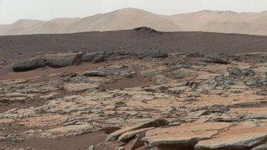 NASA opens $1 million public contest to turn carbon dioxide into sugar on Mars