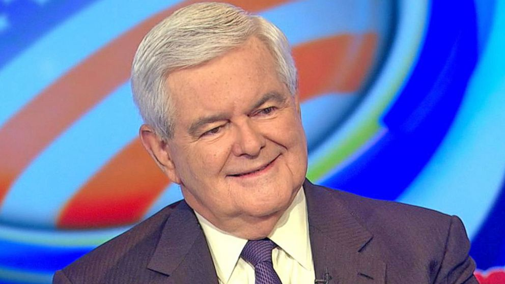 Newt Gingrich Says Voters Should Monitor Polling Sites ...
