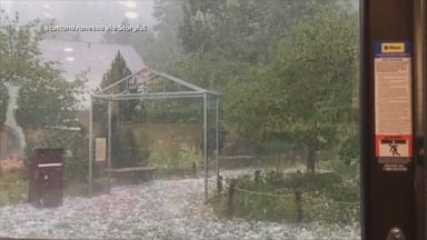 2 animals die at zoo as softball-sized hail falls in Colorado