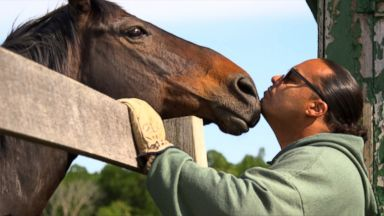 Racehorses Get 'Second Chance' from New York Inmates