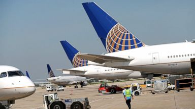 United Airlines flight diverted after dog 'mistakenly' placed on the plane