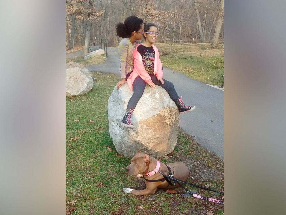 PHOTO: The 10-year-old Corry twins sit on a rock in Woodland Park, New Jersey while their new dog, Carmella, waits for them on the ground.