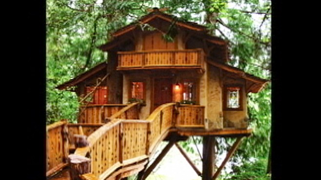 Grown Up Treehouses Video Abc News