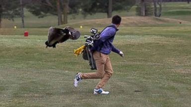 High school golfer attacked by goose in hilarious set of photos