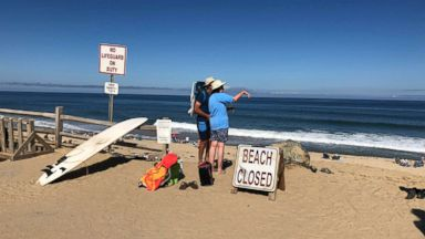 Man dies after shark attack on Cape Cod: Police