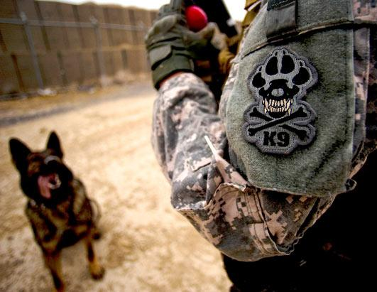 Military working dogs logo - photo#42