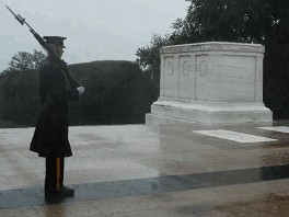 Tomb of unknown soldier webcam
