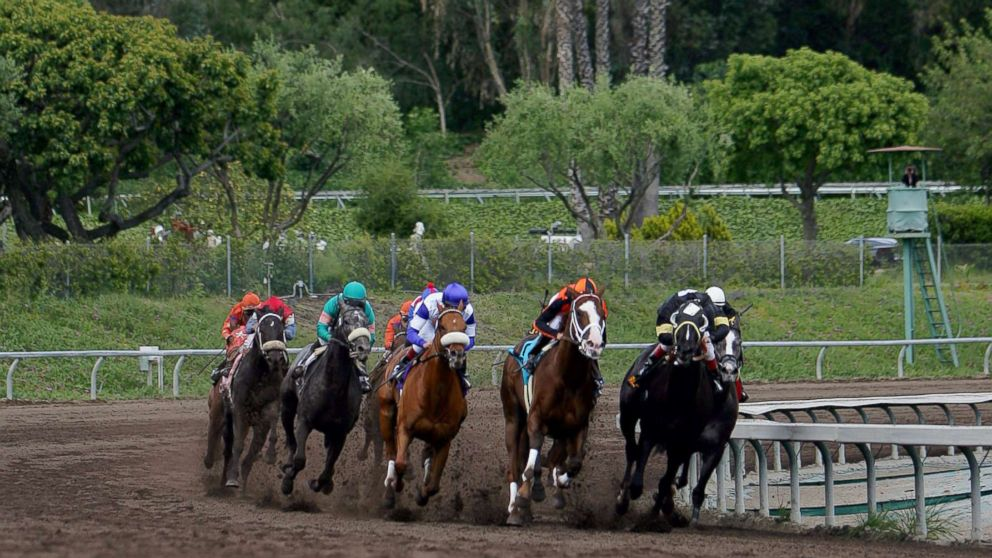 Death Toll At Horse Track Rises To 19 As Employees Test
