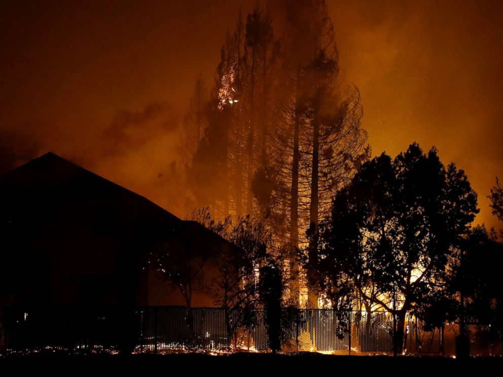 PHOTO: Trees burn behind houses in a residential area in Santa Rosa, Calif., Oct. 9, 2017.