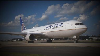 United Airlines vows to make changes after puppy dies in overhead bin